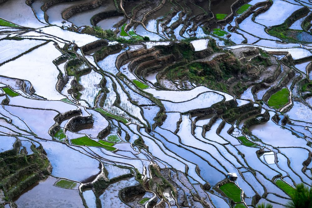 banaue rice terraces quick guide to the philippines