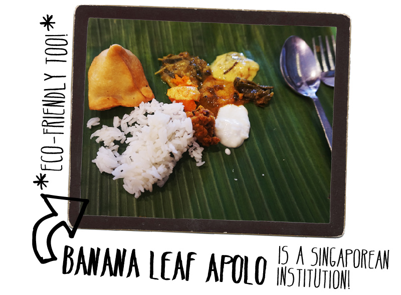 City Guide SIngapore Banana Leaf Apolo