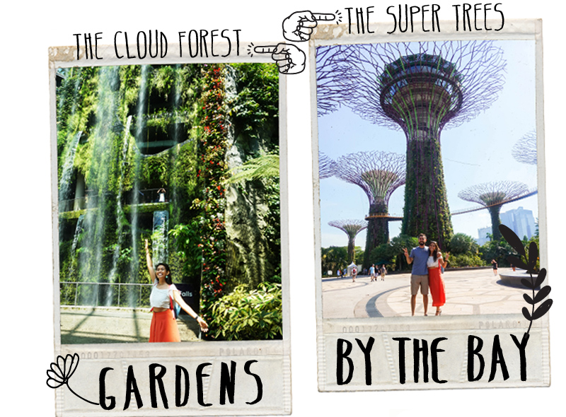 City Guide SIngapore Gardens By The Bay